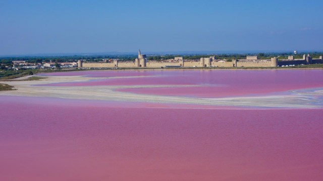 Aigues-Mortes, Camargue, Gard, France
