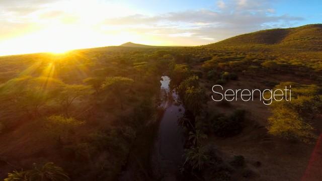 Serengeti desert