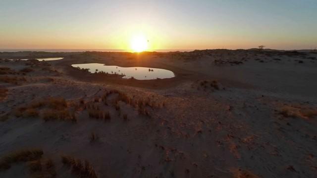 Bonne anse, La Palmyre France