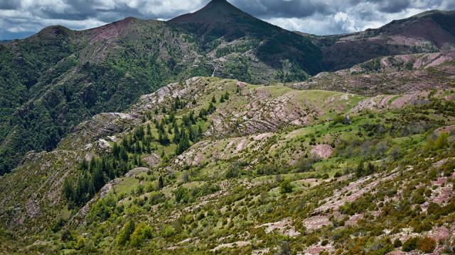 """Mount """"Tête de rigaud"""""""