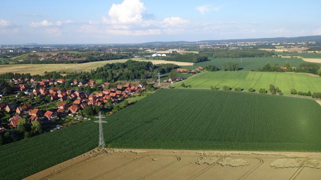 Meinefeld
