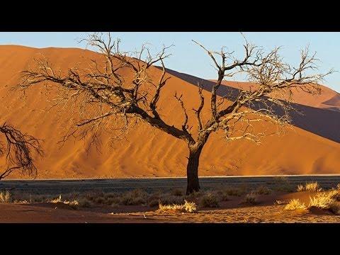 Sossusvlei & Deadvlei, Namibia