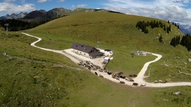 Passo Brocon – Castello Tesino Malga Valfontane
