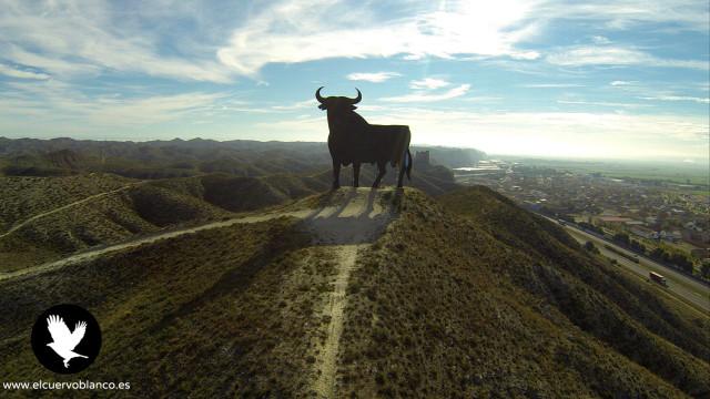 Legendary Spanish Bull, (Zaragoza, Spain)