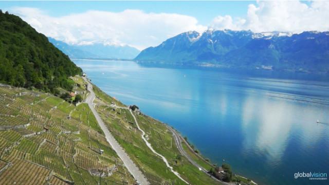 Vineyard Terraces, Switzerland