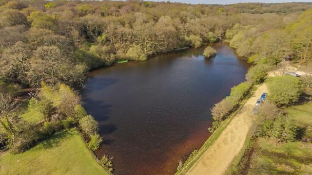 Eyeworth Pond, New Forest, Hampshire, UK