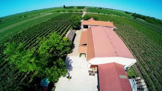 Vindulo Winery, Temerin Srbia