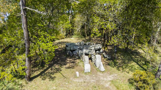 Dolmen de Mané Croh, Crucuno, Erdeven, Morbihan