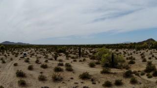Arizona Desert, AZ