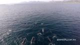 Loreto Bay – Exploring Baja ep. 1