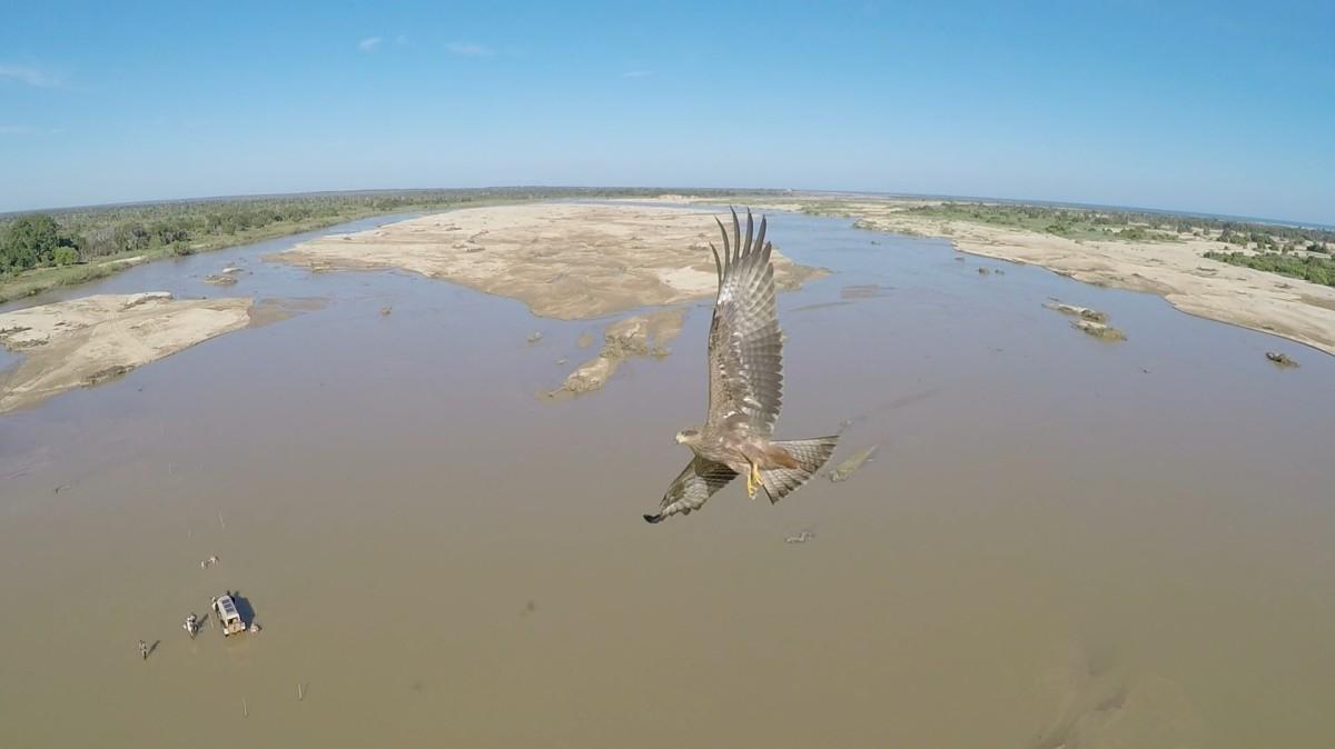 Maharivo river, madagascar