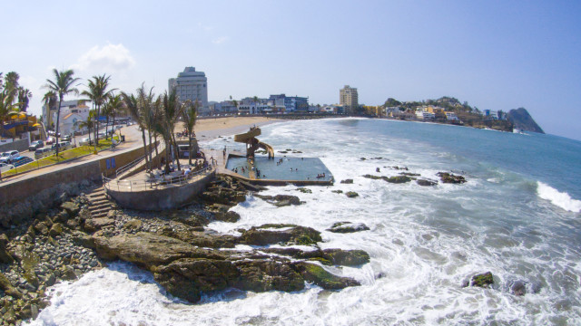 Carpa Olivera, Mazatlan, Sinaloa, Mexico
