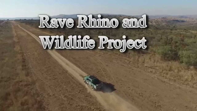 Rave Rhino and Wildlife Project