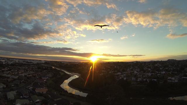 Pakuranga, Auckland, New Zealand