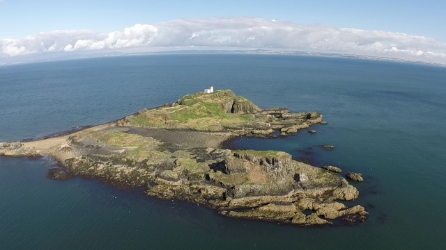 Fidra Island, Yellowcraigs
