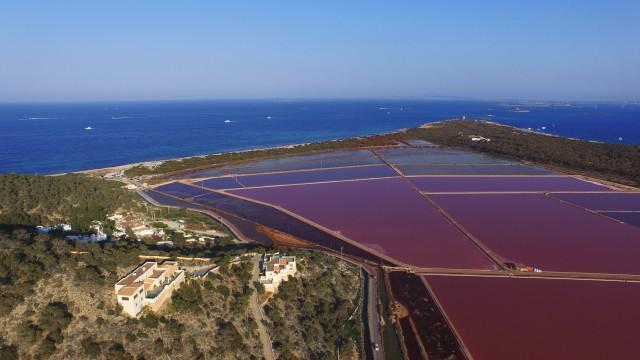 Salines, Ibiza