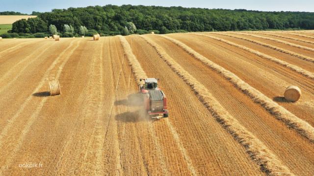 Moissons Massey Ferguson, prise de vue aerienne par drone, Le Mans, Sarthe, France
