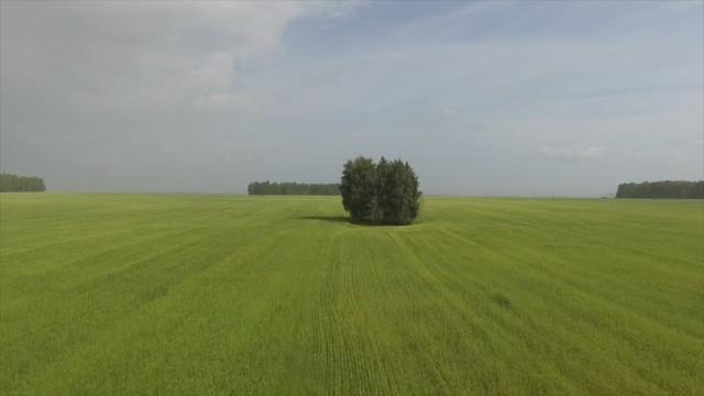 Chelyabinskaya oblast', Russia