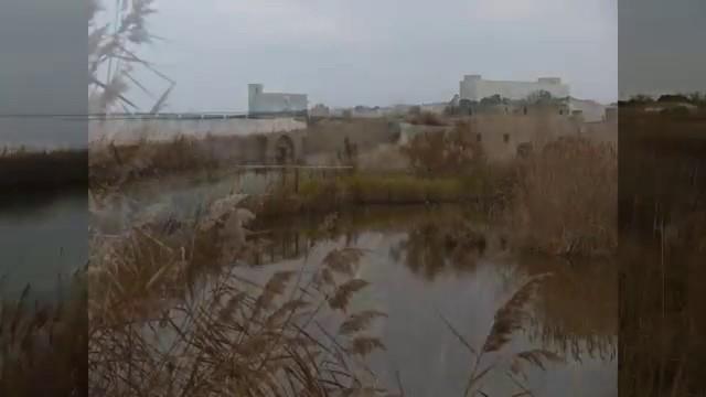 Aigues Mortes