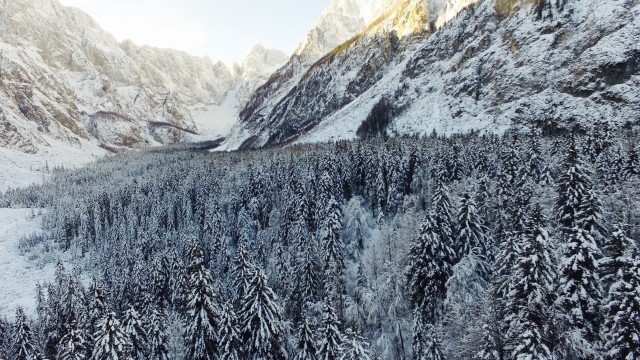 Peaceful valley of Tamar in Slovenia Alps