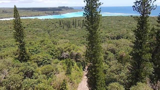 Joj, Lifou, Nouvelle-Calédonie