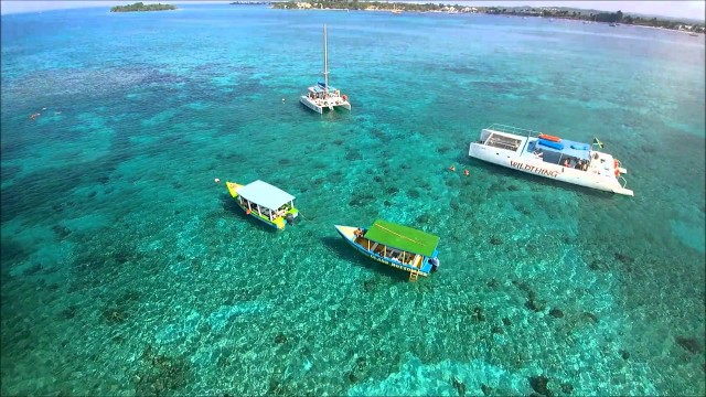 Negril, reef , seven miles beach, Jamaica
