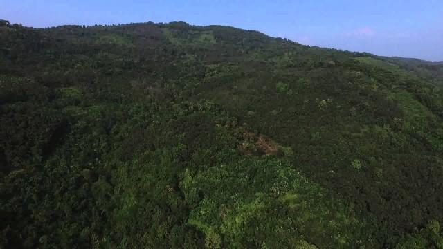 Puralimala, Kerala, India