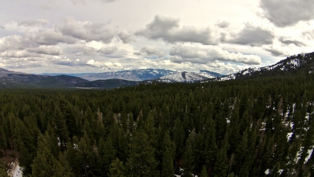 Toiyabe National Forest, Sierraville, California, United States