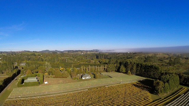 Kerr Farm Vineyard, Kumeu, New Zealand