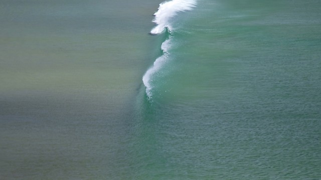 Te Ari Point, New Zealand