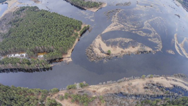 "Where the river ""Volchina"" flows into the ""Mologa"""