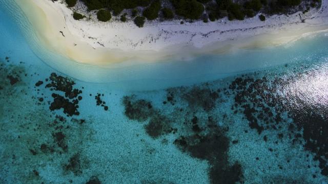 Maldives N.kendhivaru