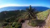 Spain,Canarias, Tenerife,Los Realejos