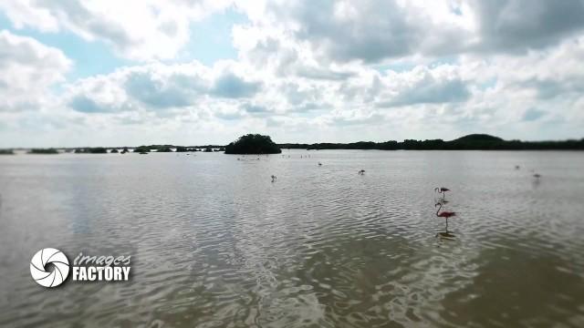Ria de Progreso Yucatán