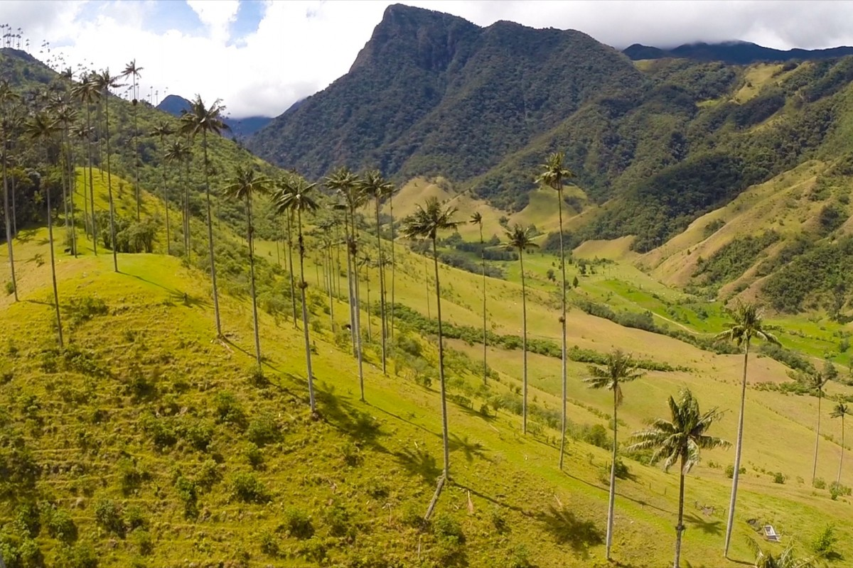black drone with Valle Del Cocora Salento Eje Cafetero Colombia on Test likewise 7125 also Theatre Antique Dorange Orange France together with 12745 additionally Heres Why You Need To Visit Slieve League Immediately.