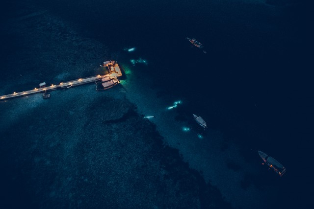 Night divers at Maldives