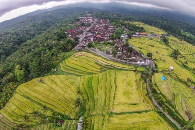 Jati Luwih Village Bali Indonesia