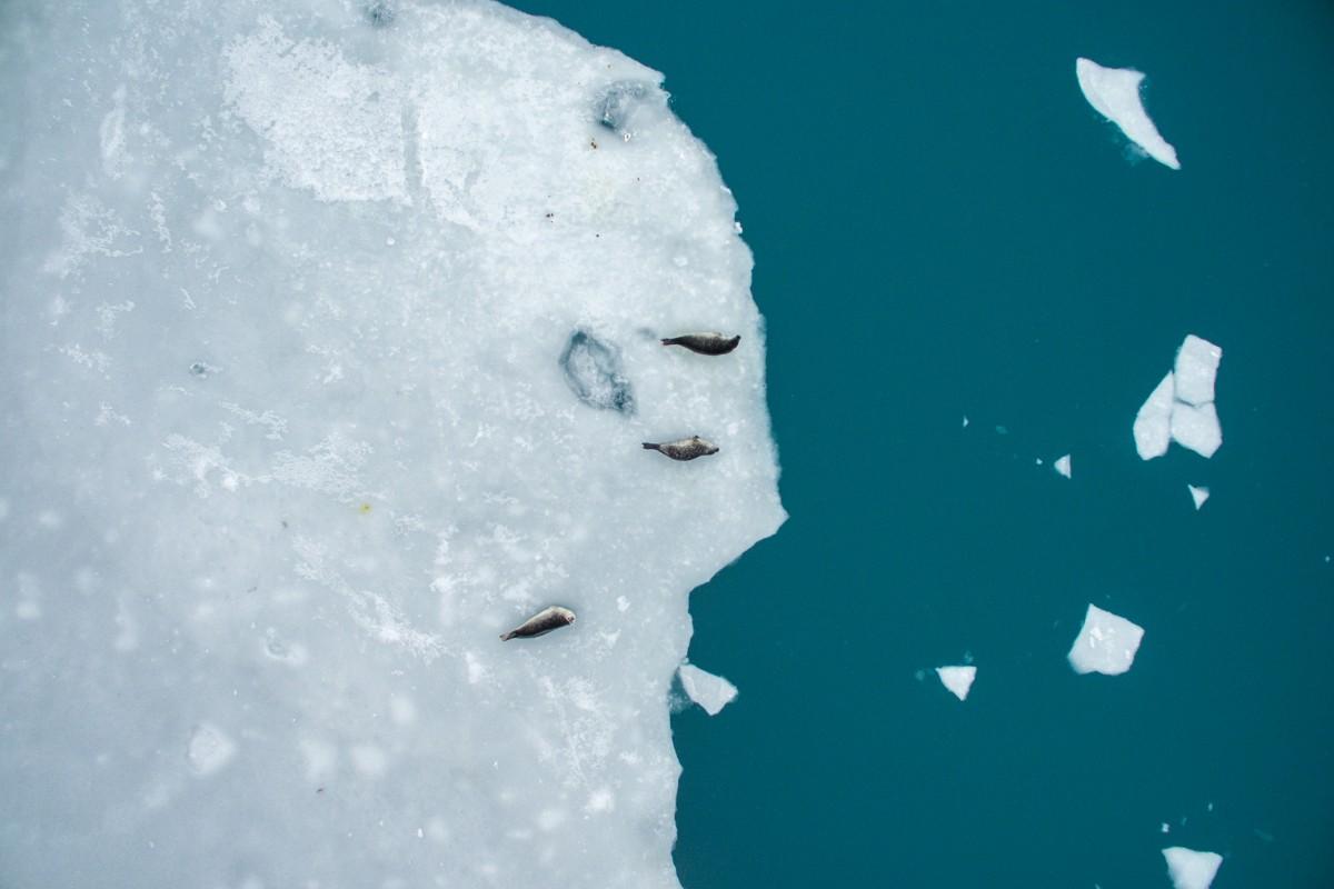 Vatnajökull glacier lagoon