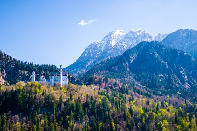 Neuschwanstein Castle / Bavaria / Germany