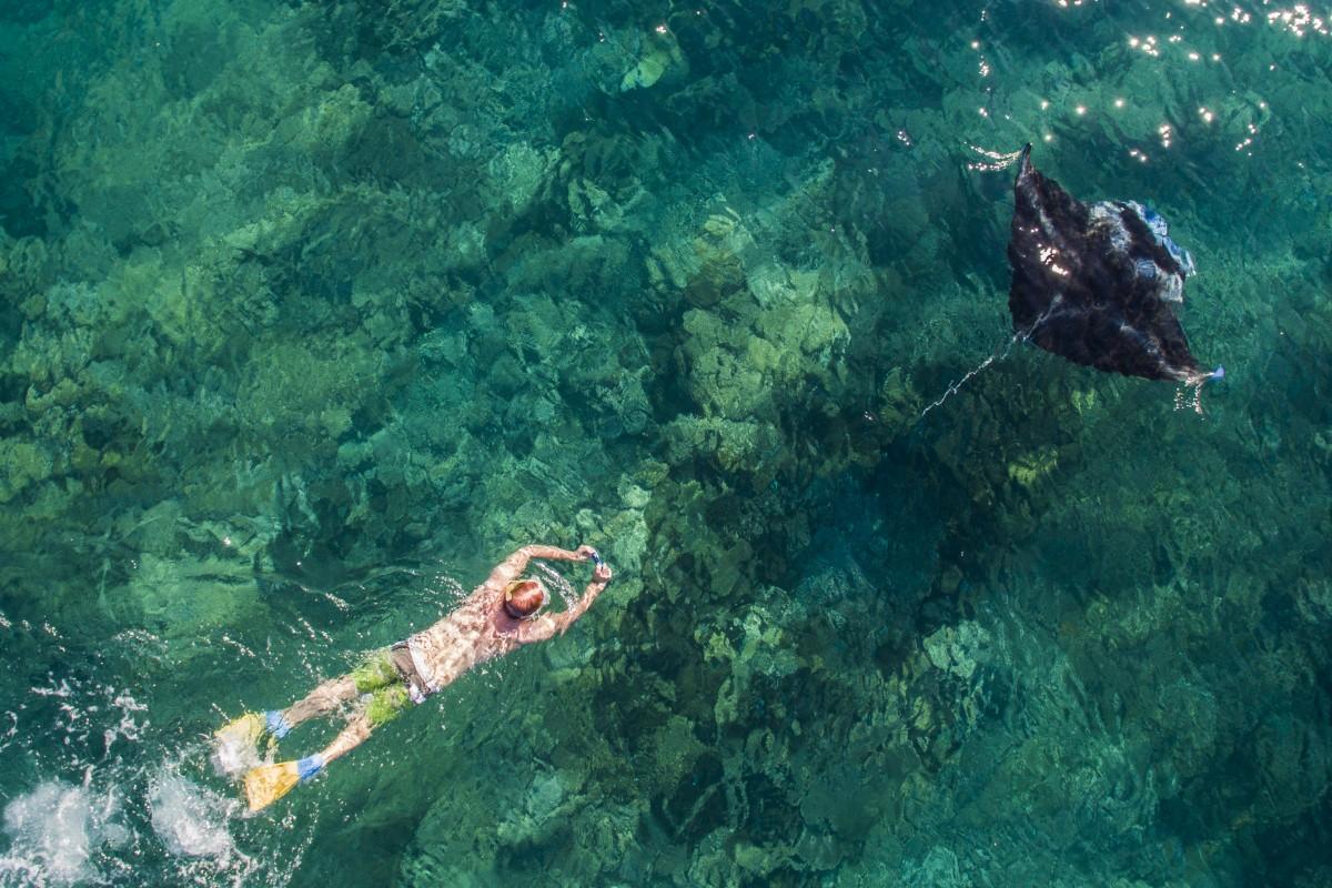 Сноркеллер переслідує ската манта рей, острови Ясава, Фіджі, Droneworks NZ