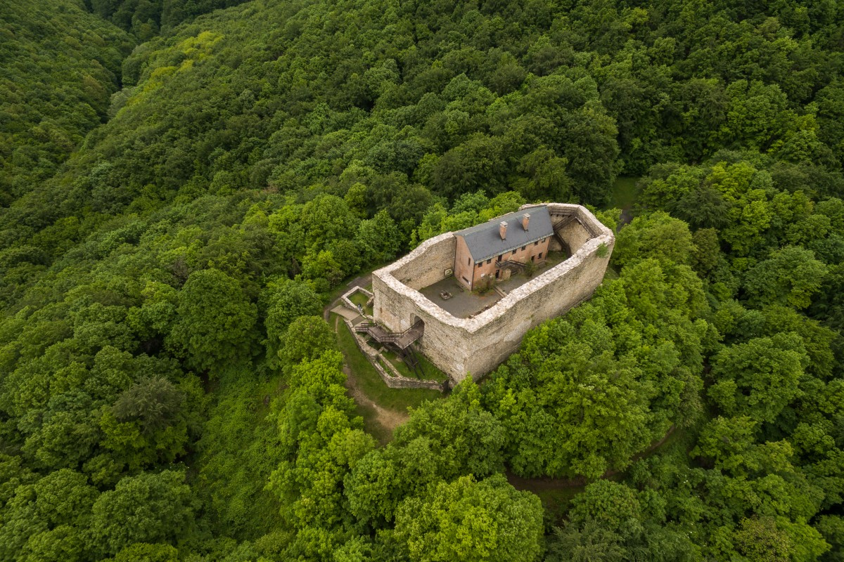 Castle of Máré