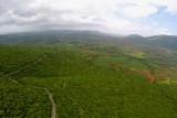 blue hills,