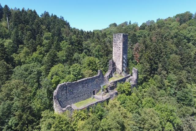 Castle Ruin Wieladingen