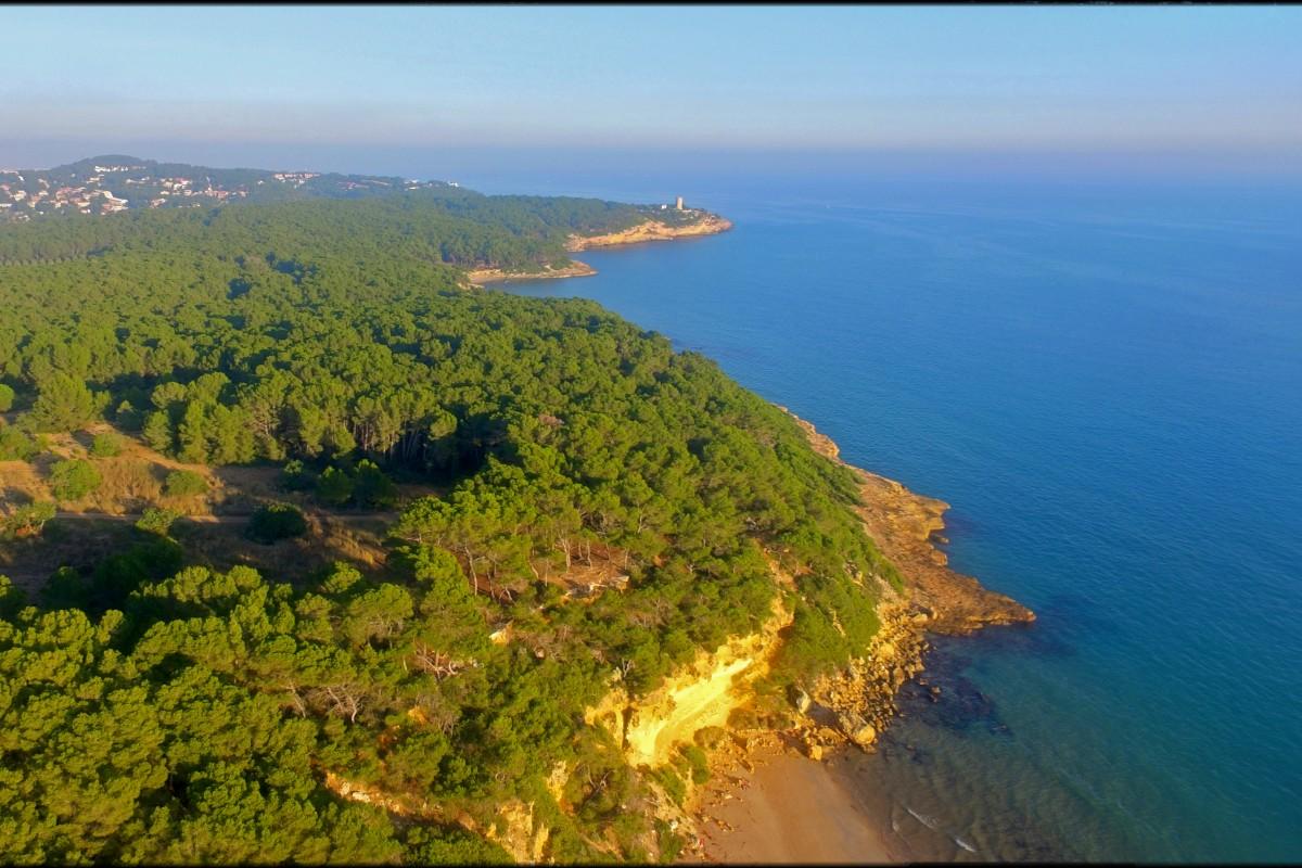 Bosc de la Marquesa and Mediterranean Sea