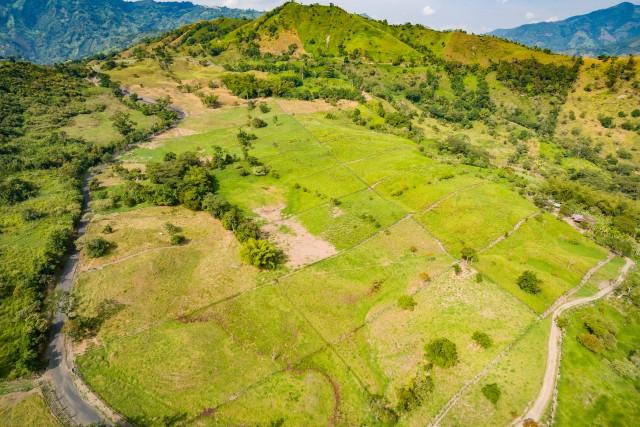Vereda Pinzaima, Vergara Cundinamarca, Colombia