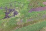 Wetland Ciénaga El Conchal