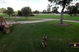 South Shore Park, The Woodlands, TX