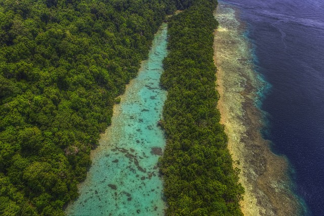 Pulau Kakaban, Kepulauan Derawan, Kalimantan Timur, Indonesia