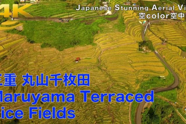 """Maruyama Terraced Rice Fields,Mie,Japan"""