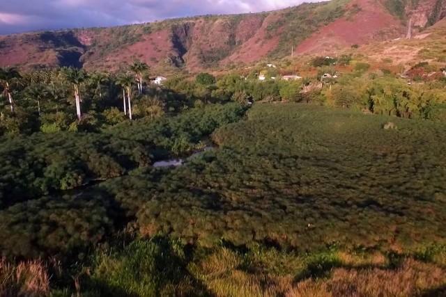Reunion island Moulin a eau